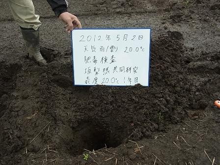肥毒検査1.JPG