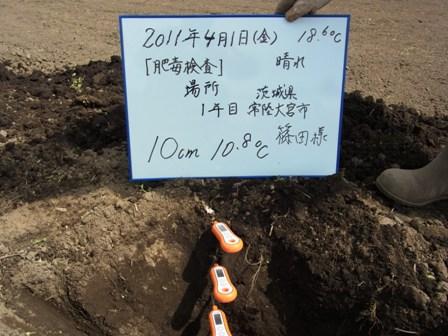 10cm(2011.4.1).JPG