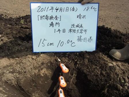 15cm(2011.4.1).JPG