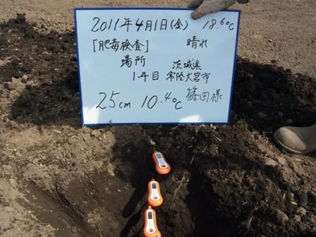 25cm(2011.4.1).JPG