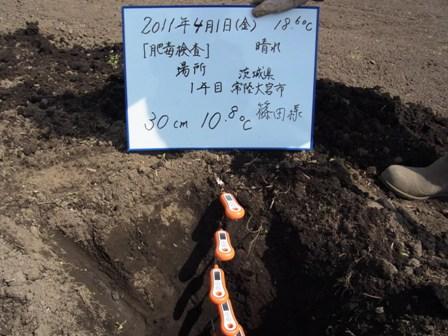 30cm(2011.4.1).JPG