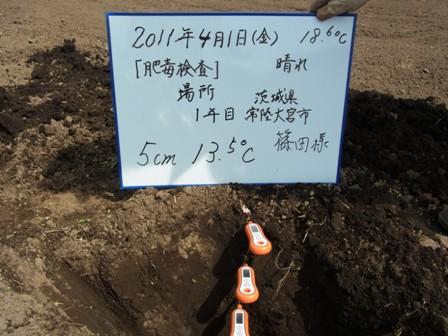 5cm(2011.4.1).JPG