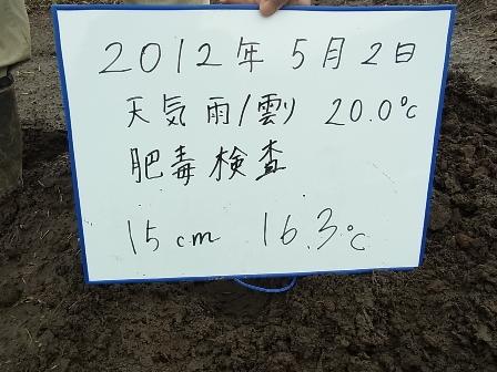 15センチ.JPG