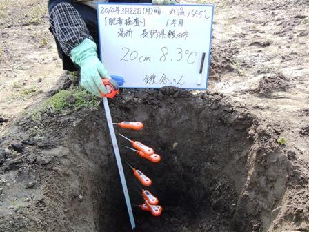 2010.3.22.8.JPG