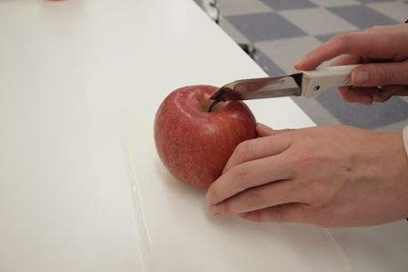 2010.3.3.apple2.JPG