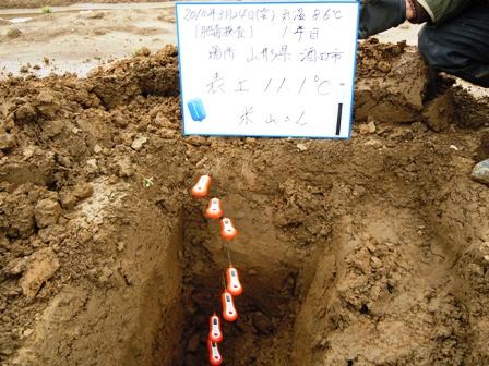 2010.3.30.2.JPG