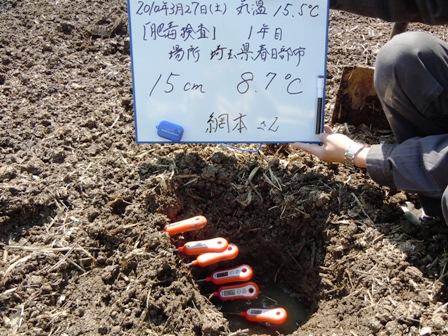 2010.3.31.7.JPG