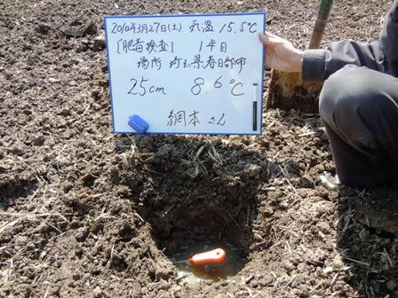2010.3.31.9.JPG