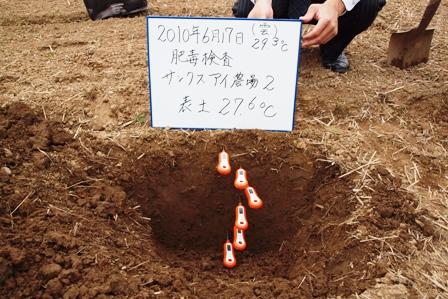 2010.6.18.12.JPG