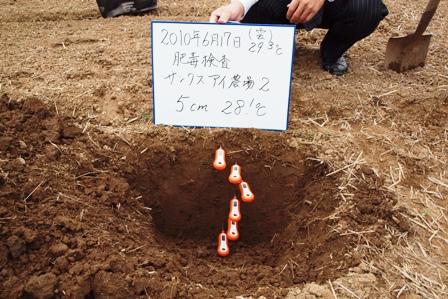 2010.6.18.13.JPG