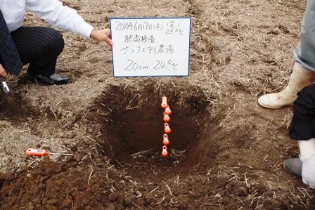 2010.6.18.8.JPG