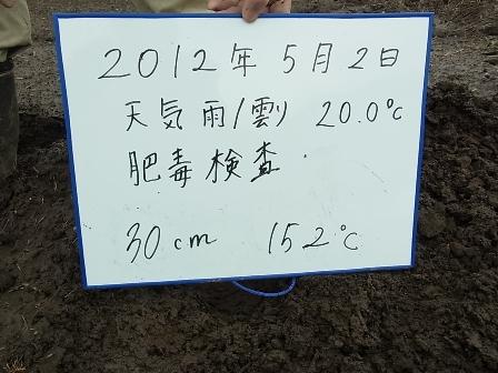 30センチ.JPG