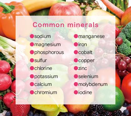 Common minerals,●sodium●magnesium●phosphorous●sulfur●chlorine●potassium●calcium●chromium●manganese●iron●cobalt●copper●zinc●selenium●molybdenum●iodine